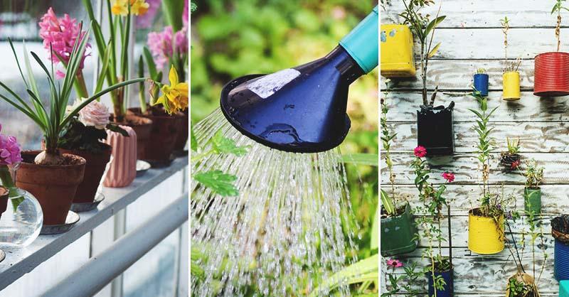 18 méthodes de jardinage à choisir pour maximiser votre espace
