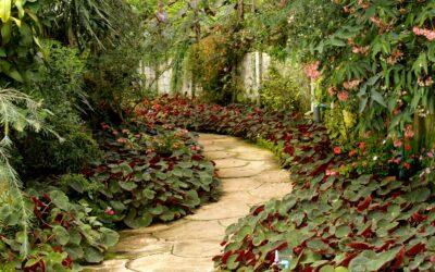 Quel budget prévoir pour les travaux d'aménagement de son jardin?